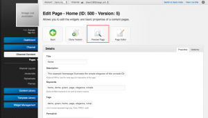 Unroole Site Builder Admin Panel - Page Preview.png